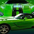 Green Viper by Jim Hatch