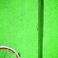 Green Wall And Bicycle Wheel by Silvia Ganora
