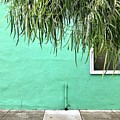 Green Wall With Leaves by Julie Gebhardt
