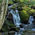Green Waterfall by Ann Keisling