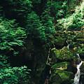 Green Waterfall by Pati Photography