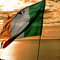 Flag Of Ireland At The Cliffs Of Moher by Aidan Moran
