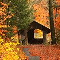 Greenfield Pumping Station Bridge Autumn by John Burk