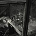 Greenhouse by Clayton Bastiani