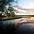 Greenlake Tranquility by Mike Reid