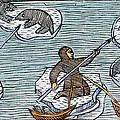 Greenland Eskimos, 1555 by Granger