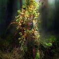 Greenman by Karen Koski