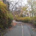 Greenway Trail In The Fall by LKB Art and Photography