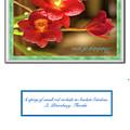 Greeting Card 01 by Gene Norris