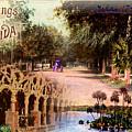 Greetings From Florida by Deborah Hildinger