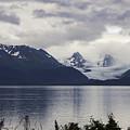 Grewingk Glacier by Phyllis Taylor