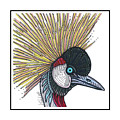 Grey Crowned Crane #52 by Allie Rowland