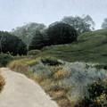 Grey Day Pt. Lobos by Laura Wynne