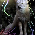 Grey Fox  by Madeline  Allen - SmudgeArt