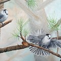 Grey Jays In A Jack Pine by Ruth Kamenev