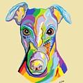 Greyhound by Eloise Schneider