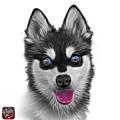 Greyscale Alaskan Klee Kai - 6029 -wb by James Ahn
