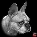 Greyscale French Bulldog Pop Art - 0755 Bb by James Ahn