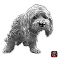 Greyscale Lhasa Apso Pop Art - 5331 - Wb by James Ahn