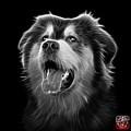 Greyscale Malamute Dog Art - 6536 - Bb by James Ahn