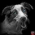 Greyscale Merle Australian Shepherd - 2136 - Bb by James Ahn