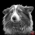 Greyscale Shetland Sheepdog Dog Art 9973 - Bb by James Ahn