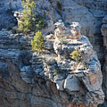 Griffins In Grand Canyon by Michael Tieman