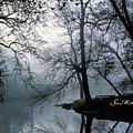 Grings Mill Fog 1043 by Scott McAllister