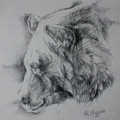 Grizzly Sketch by Derrick Higgins