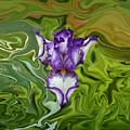 Groovy Purple Iris by Rebecca Margraf