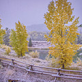 Gros Ventre Grand Teton Fall Snowfall by Scott McGuire
