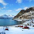 Grotfjord Norway by Mariusz Czajkowski