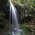 Grotto Falls In The Great Smokies by Tim Fitzharris
