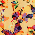 Group Of Butterflies With Colorful Wings by Jorgo Photography - Wall Art Gallery