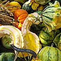 Group Of Gourds Expressionist Effect by Rose Santuci-Sofranko