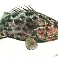 Grouper Fish by Juan Bosco