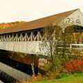 Groveton-northumberland Covered Bridge by Wayne Toutaint