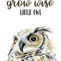 Grow Wise Little Owl by Olga Shvartsur