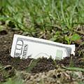 Growing Money by Mats Silvan