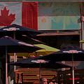 Growling Gator Canada 150 Two by John Scatcherd