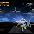 Grumman F-11 Tiger by Richard Hamilton