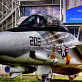 Grumman F-14a Tomcat by David Patterson