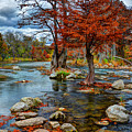 Guadalupe River In Autumn by Savannah Gibbs