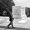 Guarding The Unknown Soldier by Garland Johnson