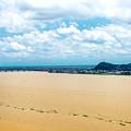 Guayas River View by Jess Kraft