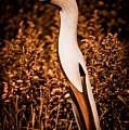 Guineafowl by Venetta Archer