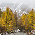 Guisane Valley In Autumn - French Alps by Paul MAURICE