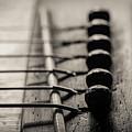 Guitar I Toned by David Gordon