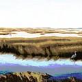 Gulf Coast Florida Marshes I by G Linsenmayer