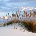 Gulf Dunes by Eric Foltz